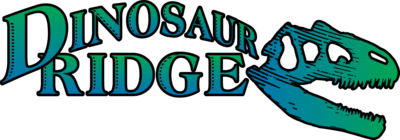 Dr logo color 2019