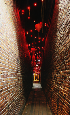 Fan tan alley victoria chinatown  19