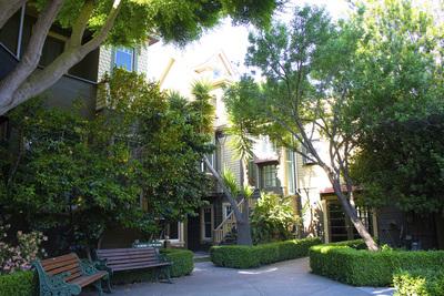 Almond courtyard