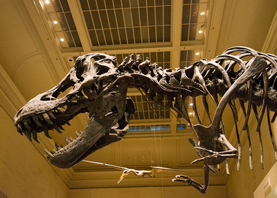 3dinosaur1