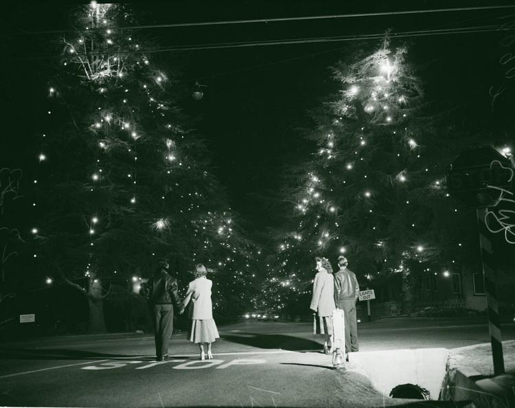Christmas tree lane altadena 1953