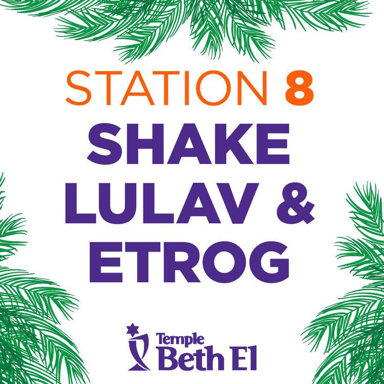Sukkot station numbers v2