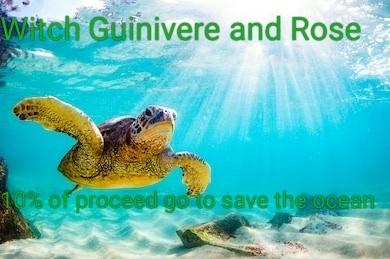 Endangered hawaiian green sea turtle 260nw 649719193  01  01