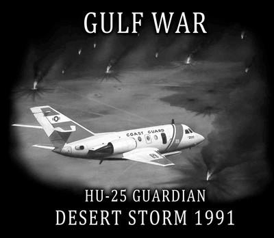 C gulf war desert storm