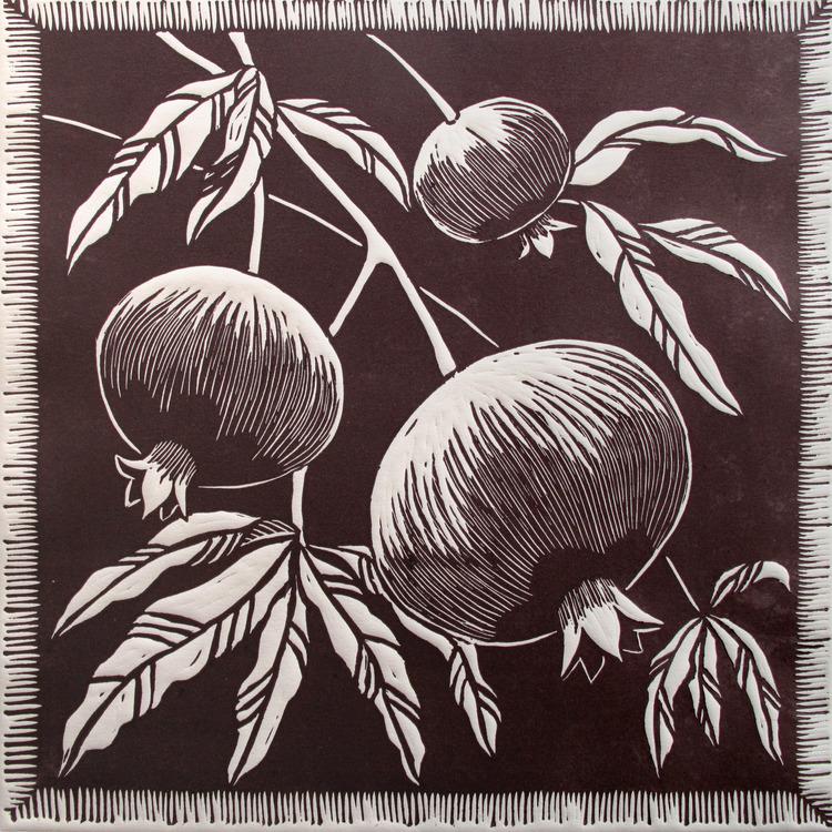 Gardner  judy pomegranate